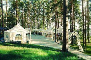 шатры для кафе в лесной зоне