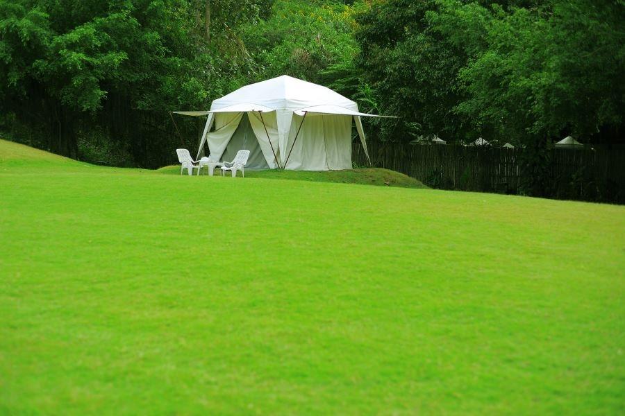 Белый тент-шатер с круглым куполом, на садовом участке