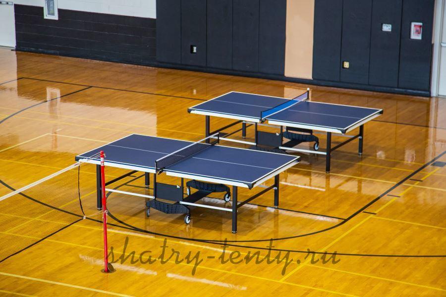 Теннисный стол для профессиональных соревнований во внутренних помещениях
