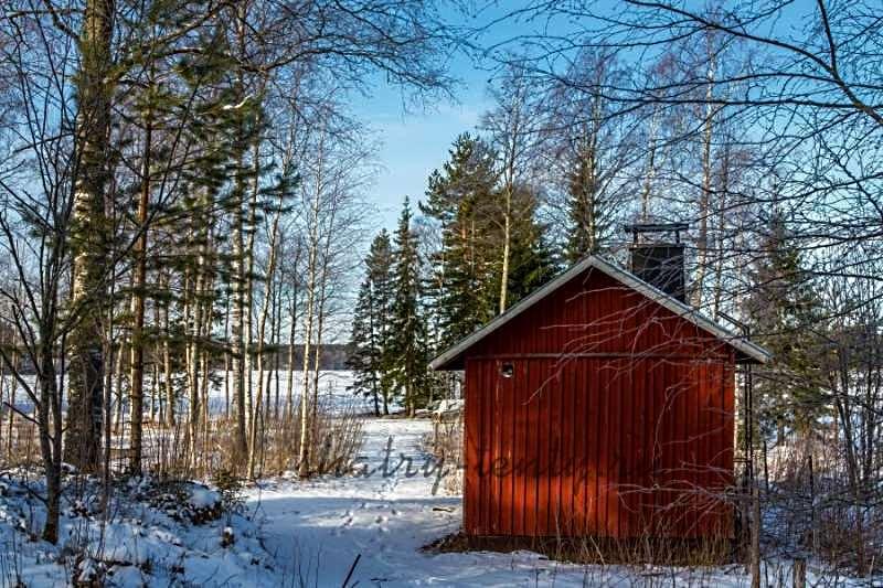 Перевозная деревянная модуль-баня в зимнем лесу