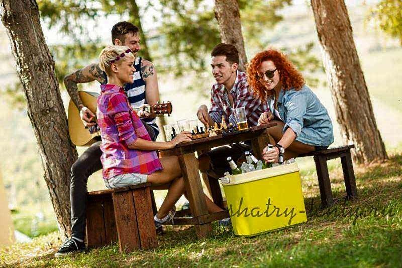 Молодежный пикник на природе с холодным пивом в переносном термоконтейнере