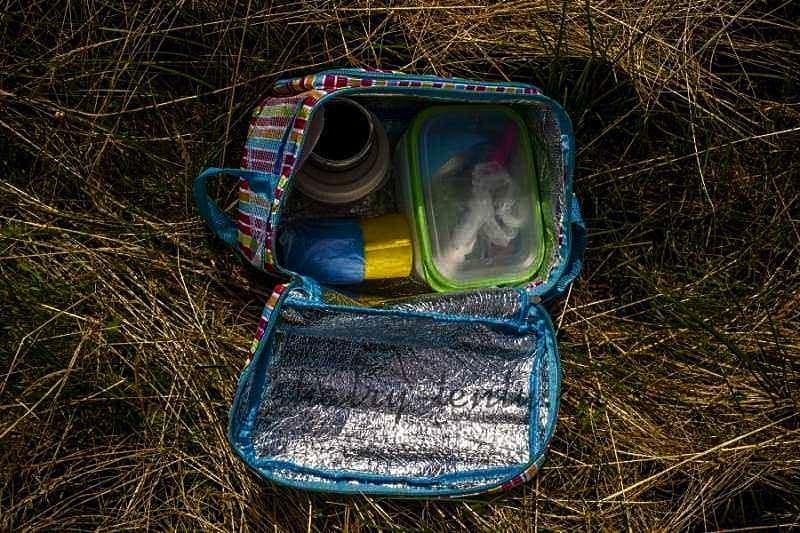"""Бюджетная сумка - холодильник размером """"Ланч-бокс"""""""