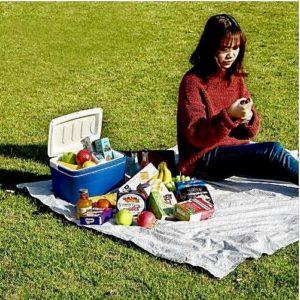 Небольшой синий контейнер холодильник с Алиэкспресс на пикнике