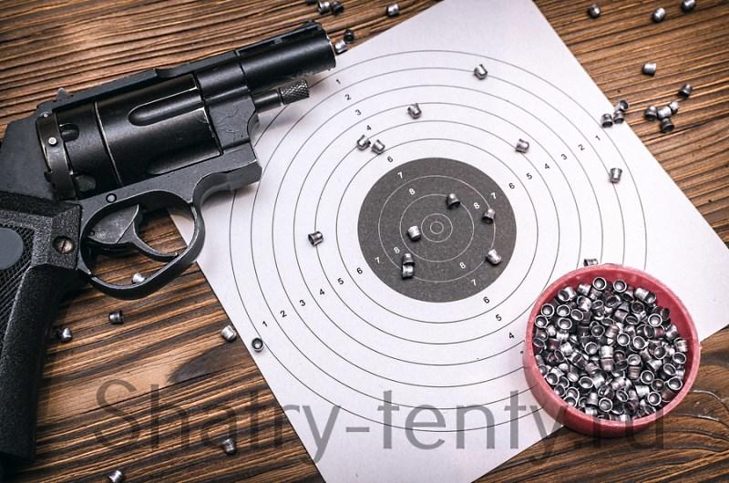 Классический пневматический тир с винтовками и пистолетами