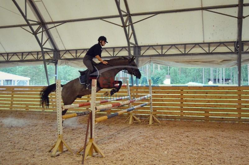 Шатер для тренировки лошадей