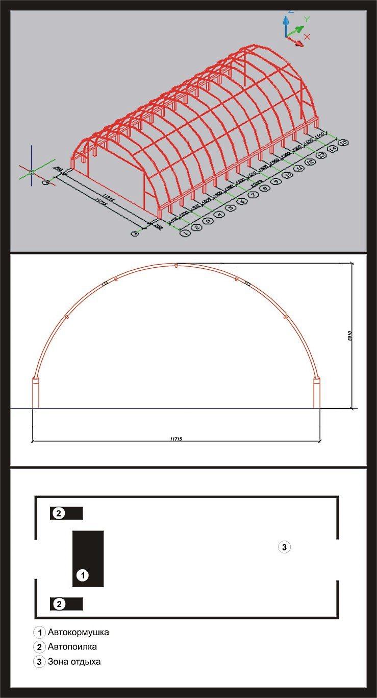 Строительство тентового ангара для свинарника