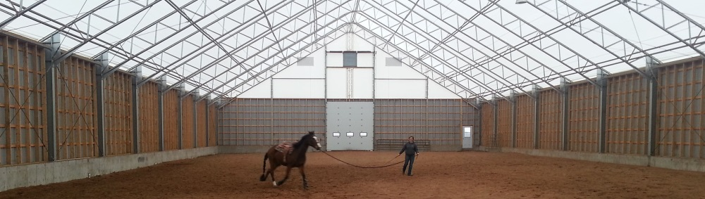 Тренировка лошадей в большом классическом шатре